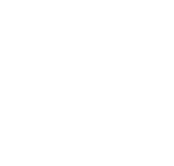royal-lanes-social-icon